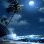 moonlight-nature-mobile-wallpaper-5