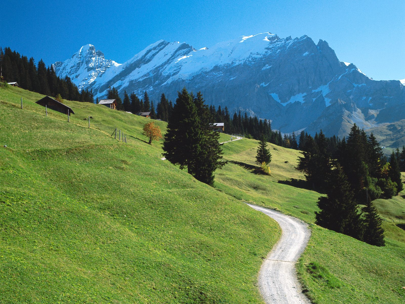 honeymoon-destination-switzerland-photos- (14)