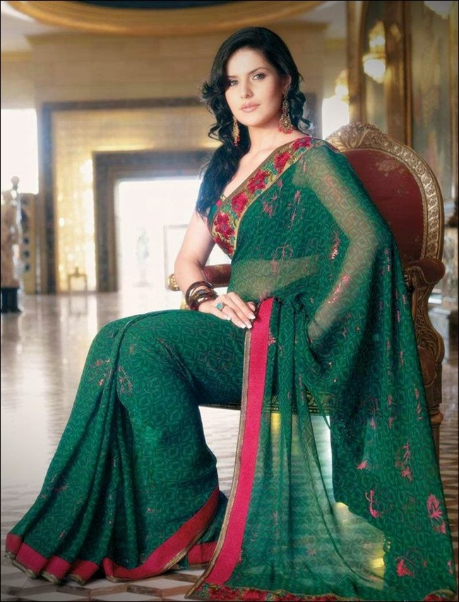 zarine-khan-latest-saree-collection- (17)