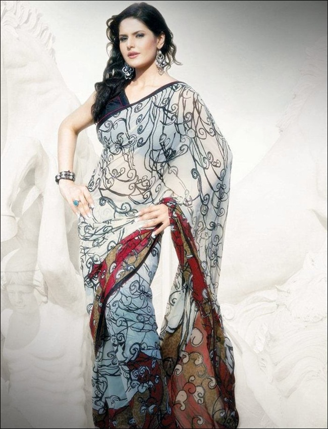 zarine-khan-latest-saree-collection- (20)