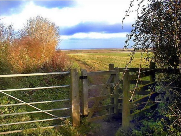 england-countryside- (35)