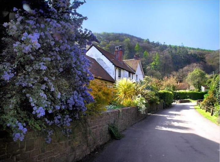 england-countryside- (38)
