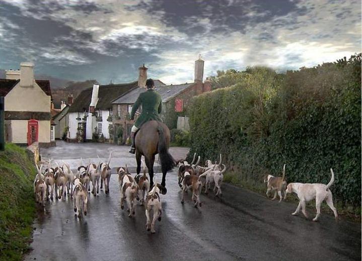 england-countryside- (40)