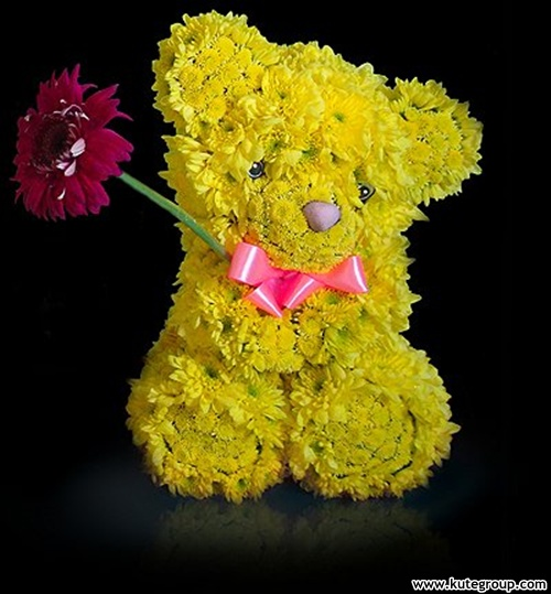 teddy bear flowers