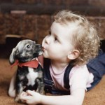 babies with animals-8