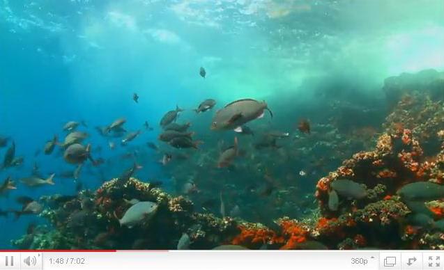 galapagos-island-video