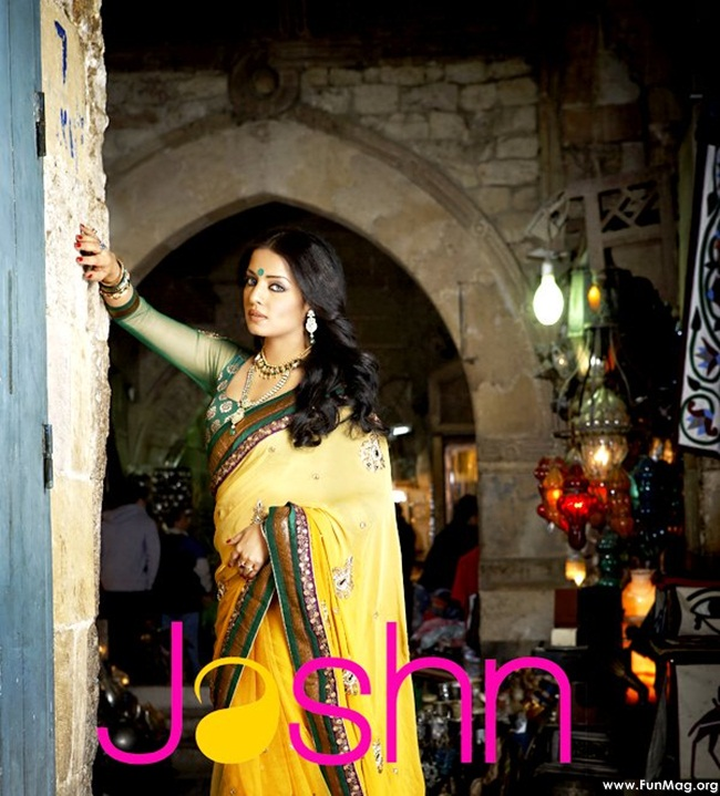 celina-jaitely-jashn-saree-collection- (9)