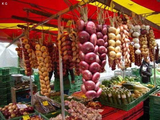 onion-festival- (1)