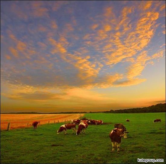 best nature photos