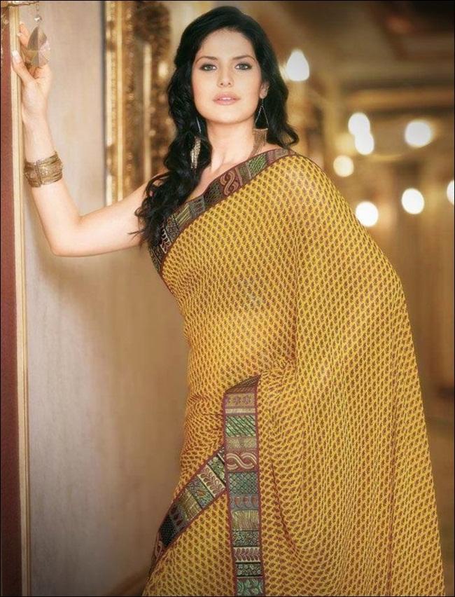 zarine-khan-latest-saree-collection- (16)