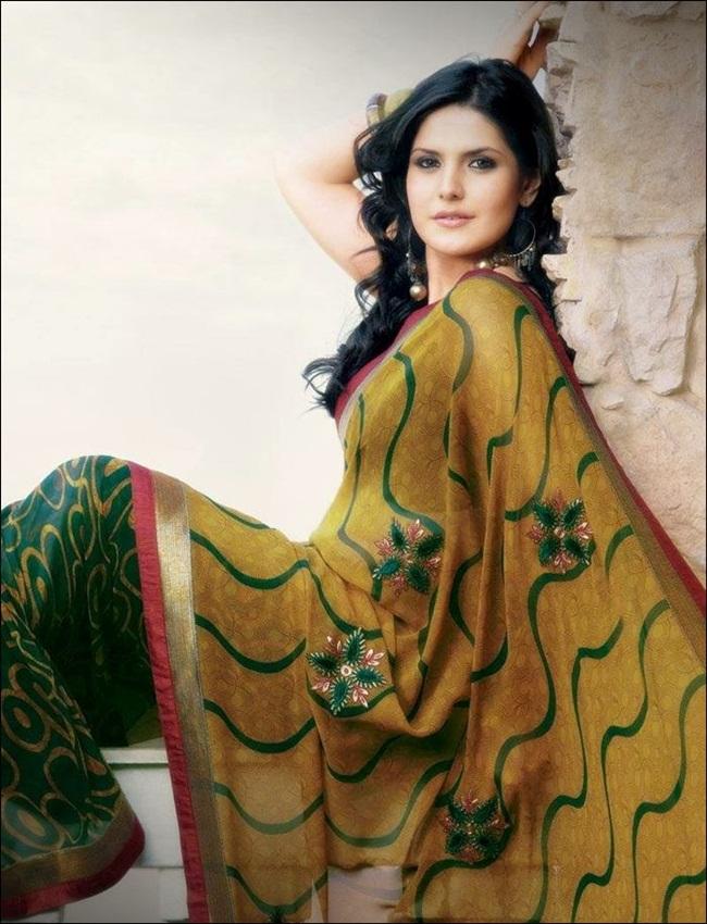 zarine-khan-latest-saree-collection- (18)