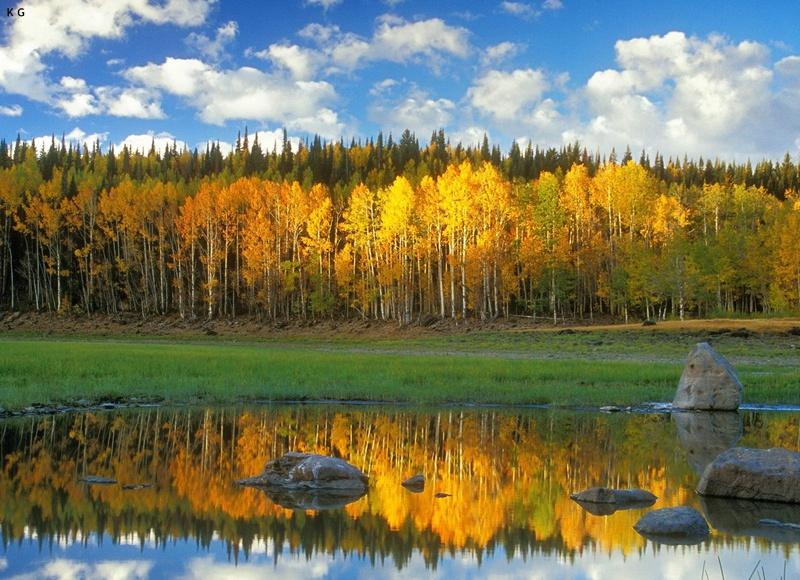 fall photography