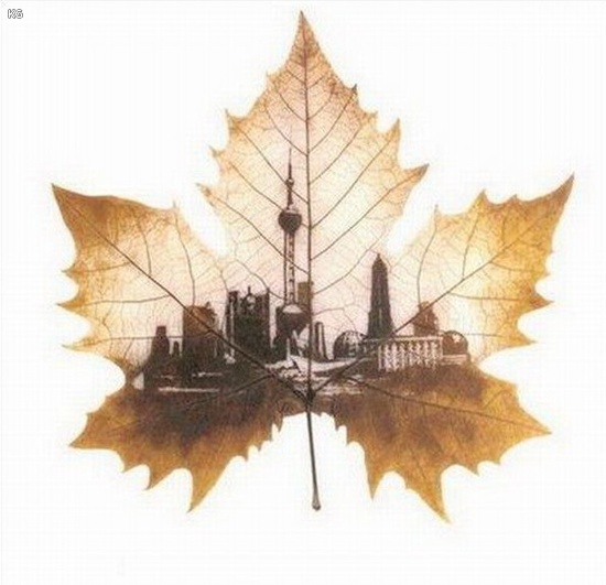 leaf-carving-art- (15)